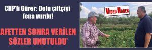 CHP'li Gürer: Dolu çiftçiyi fena vurdu!