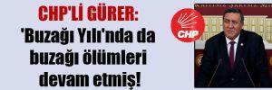 CHP'li Gürer: 'Buzağı Yılı'nda da buzağı ölümleri devam etmiş!