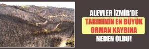 Alevler İzmir'de tarihinin en büyük orman kaybına neden oldu!