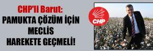 CHP'li Barut: Pamukta çözüm için Meclis harekete geçmeli!