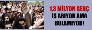 1,3 milyon genç iş arıyor ama bulamıyor!