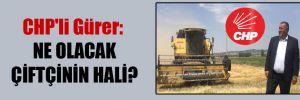 CHP'li Gürer: Ne olacak çiftçinin hali?