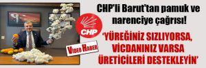CHP'li Barut'tan pamuk ve narenciye çağrısı!