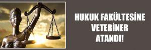 Hukuk fakültesine veteriner atandı!