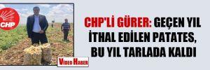 CHP'li Gürer: Geçen yıl ithal edilen patates, bu yıl tarlada kaldı