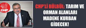 CHP'li Bülbül: Tarım ve orman alanları madene kurban gidecek!