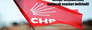 CHP MYK, ilçe kongresi delege seçimlerinde uyulacak esasları belirledi!