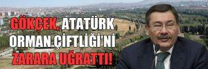 Gökçek, Atatürk Orman Çiftliği'ni zarara uğrattı!