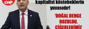 CHP'li Polat: Taş ocakları kapitalist köstebeklerin yuvasıdır!