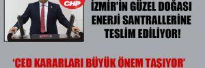 CHP'li Polat: İzmir'in güzel doğası enerji santrallerine teslim ediliyor!