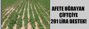 Afete uğrayan çiftçiye 201 lira destek!