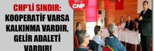 CHP'li Sındır: Kooperatif varsa kalkınma vardır, gelir adaleti vardır!