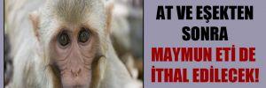 At ve eşekten sonra maymun eti de ithal edilecek!