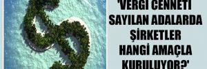 'Vergi cenneti sayılan adalarda şirketler hangi amaçla kuruluyor?'