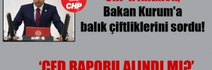 CHP'li Antmen, Bakan Kurum'a balık çiftliklerini sordu!