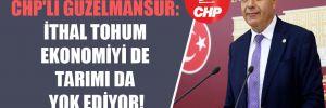 CHP'li Güzelmansur: İthal tohum ekonomiyi de tarımı da yok ediyor!