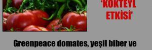 Greenpeace domates, yeşil biber ve salatalıkta zehirli madde tespit etti