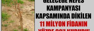 'Geleceğe Nefes kampanyası kapsamında dikilen 11 milyon fidanın yüzde 90'ı kurudu'