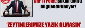CHP'li Polat: Bakan doğru bilgilendirilmiyor!