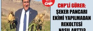 CHP'li Gürer: Şeker pancarı ekimi yapılmadan rekoltesi nasıl arttı?