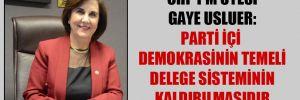 CHP PM üyesi Gaye Usluer: Parti içi demokrasinin temeli delege sisteminin kaldırılmasıdır