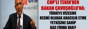 CHP'li Tekin'den Bakan Çavuşoğlu'na: Türkiye vizesine resmi olarak aracılık etme yetkisine sahip kaç firma var?