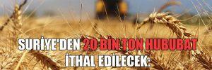 Suriye'den 20 bin ton hububat ithal edilecek: Tel Abyad'dan gelecek