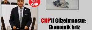 CHP'li Güzelmansur: Ekonomik kriz 'yakıyor'!