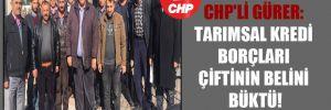 CHP'li Gürer: Tarımsal kredi borçları çiftinin belini büktü!
