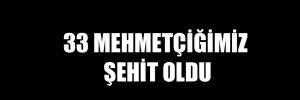 33 Mehmetçiğimiz şehit oldu