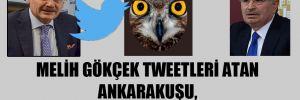 Melih Gökçek tweetleri atan AnkaraKuşu, İdris Naim Şahin'in eşi mi?!
