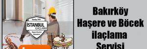 Bakırköy Haşere ve Böcek ilaçlama Servisi