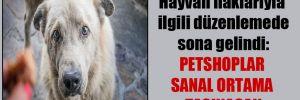 Hayvan haklarıyla ilgili düzenlemede sona gelindi: Petshoplar sanal ortama taşınacak