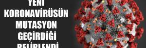 Yeni koronavirüsün mutasyon geçirdiği belirlendi