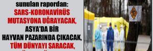 Merkel'e 8 yıl önce sunulan rapordan: SARS-Koronavirüs mutasyona uğrayacak, Asya'da bir hayvan pazarında çıkacak, tüm dünyayı saracak, üç yıl sürecek