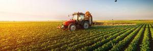 Hazine arazileri tarıma açılıyor!