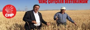 CHP'li Gürer: Tarımda kaygılar giderilmeli!