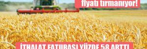 Tarım ürünlerinin fiyatı tırmanıyor!