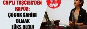 CHP'li Taşcıer'den rapor: Çocuk sahibi olmak lüks oldu!