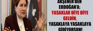 Akşener'den Erdoğan'a: Yasaklar diye diye geldin, yasaklaya yasaklaya gidiyorsun!