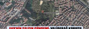 AKP'nin salgın gündemi: Validebağ Korusu Üsküdar Belediyesi'ne tahsis edildi