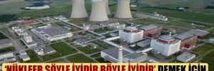 'Nükleer şöyle iyidir böyle iyidir' demek için bütçeden 2.8 milyon lira harcanacak!