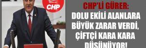 CHP'li Gürer: Dolu ekili alanlara büyük zarar  verdi, çiftçi kara kara düşünüyor!