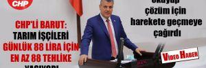 CHP'li Barut: Tarım işçileri günlük 88 lira için en az 88 tehlike yaşıyor!