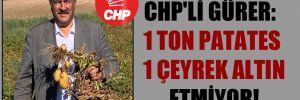 CHP'li Gürer: 1 ton patates 1 çeyrek altın etmiyor!