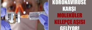 Koronavirüse karşı moleküler kelepçe aşısı geliyor!
