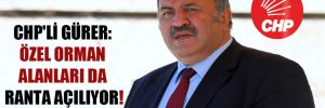 CHP'li Gürer: Özel orman alanları da ranta açılıyor!