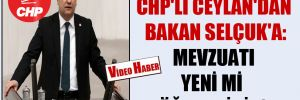 CHP'li Ceylan'dan Bakan Selçuk'a: Mevzuatı yeni mi öğrendiniz?