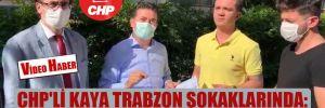 CHP'li Kaya Trabzon sokaklarında: Gençlerimiz iş bekliyor!