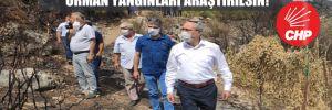 CHP'li Zeybek: Antalya ve Adrasan'daki orman yangınları araştırılsın!